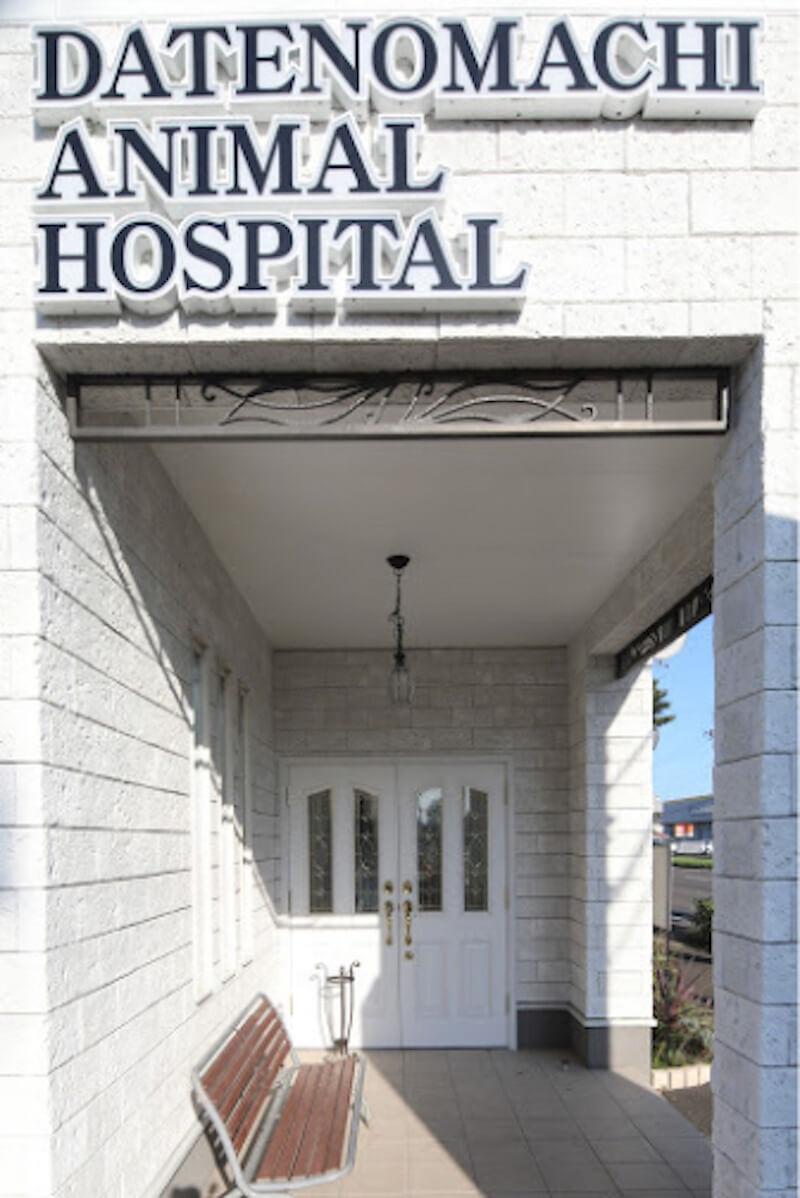 「伊達の街どうぶつ病院 公式SNS(facebook LINE)はじめました!」のサムネイル